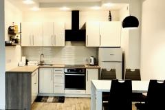 Apartament II – 41 m2 - kuchnia